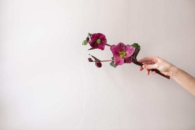 Bel fiore. il lavoro del fioraio. consegna dei fiori.