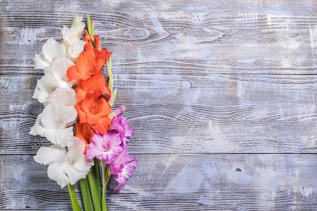 Bellissimi fiori, bordo floreale