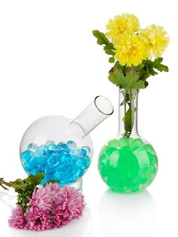 Bellissimi fiori in vaso con idrogel isolato su bianco