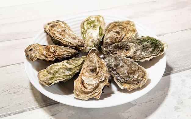 Bellissime ostriche vuote fresche della bretagna o della normandia in francia