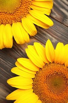 Bellissimi girasoli freschi su sfondo marrone. lay piatto, vista dall'alto, copia spazio. autunno o estate concetto, tempo di raccolta, agricoltura. sfondo naturale di girasole. foto verticale