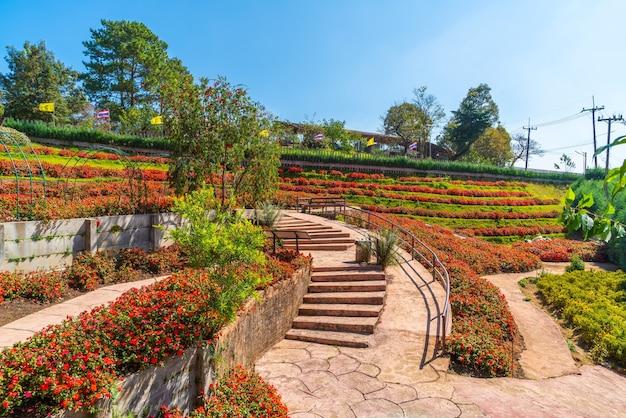 Bellissimo giardino presso la stazione agricola reale - doi inthanon a chiang mai, thailandia