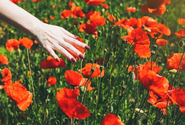Bella ragazza è in piedi sul campo estivo pieno di fiori di papavero rosso nell'erba. la donna felice in vestito rustico accarezza l'erba con la mano. unità dell'uomo con la natura. concetto di viaggio di bellezza.