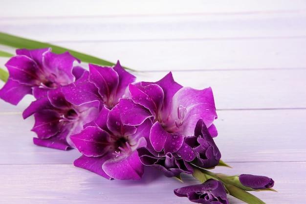 Bellissimo fiore di gladiolo sul tavolo di legno