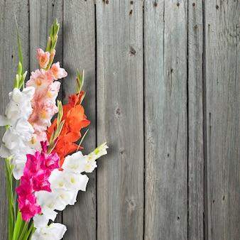 Bellissimi fiori di gladiolo su superficie in legno, superficie floreale, bordo del fiore Foto Premium
