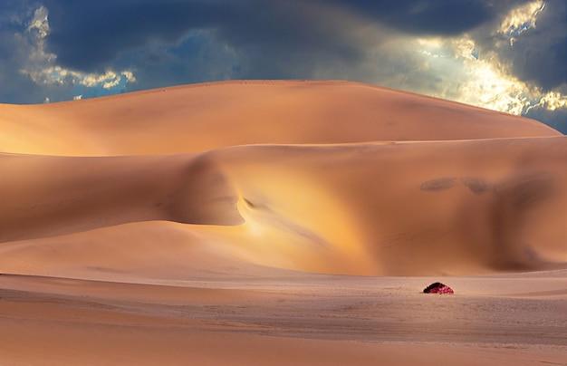 Belle dune di sabbia dorata e cielo drammatico con nuvole luminose nel deserto del namib