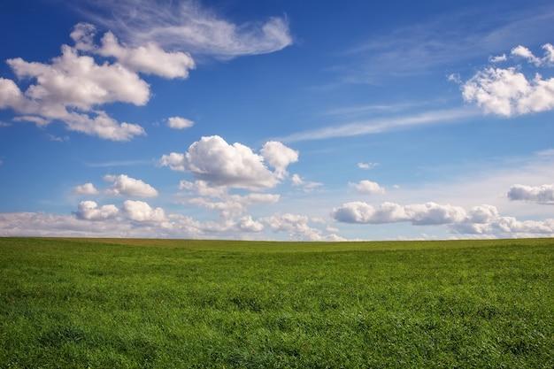 Bellissimo campo verde e cielo nuvoloso blu.