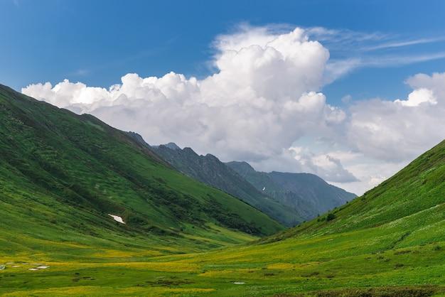 Bellissimi prati alpini fioriti verdi sul cornicione bzerpinsky a krasnaya polyana, sochi. montagne e cielo con le nuvole