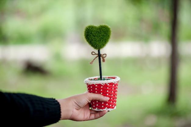 Bello concetto verde di giorno di biglietti di s. valentino delle immagini del cuore e della mano con lo spazio della copia