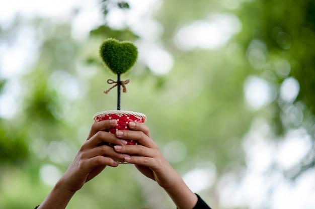Bello concetto verde di giorno di biglietti di s. valentino delle immagini del cuore e della mano