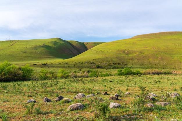 Bellissimo paesaggio estivo di colline verdi
