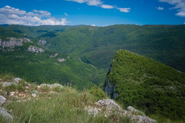 Bella montagna verde in estate. campo di margherite e fiori selvatici con montagne rocciose sullo sfondo. barskaya polyana, sopra il villaggio di sokolinoe, crimea, russia