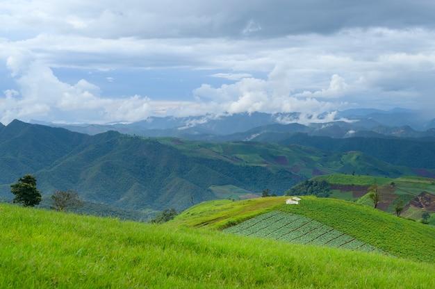 Bella vista sulle montagne verdi nella stagione delle piogge, clima tropicale