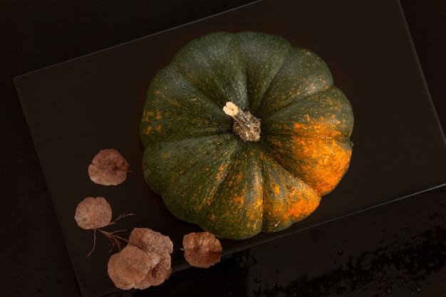 Bella zucca matura verde e arancione con gocce d'acqua e semi secchi