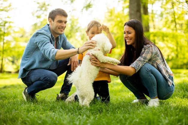 Bella famiglia felice si diverte con il cane bichon all'aperto nel parco