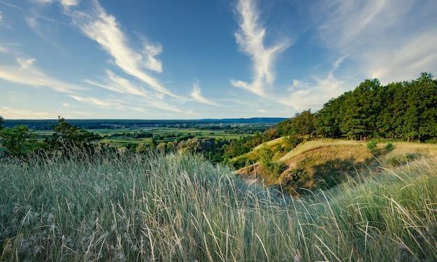 Bellissimo paesaggio estivo impressionante di prati verdi vuoti e foreste