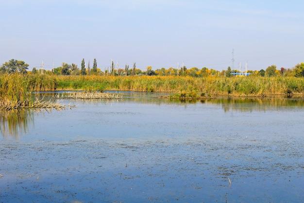 Bellissimo lago in autunno