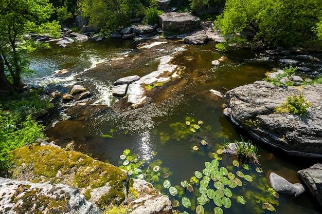 Bellissimo paesaggio di alghe che crescono nel fiume di montagna veloce