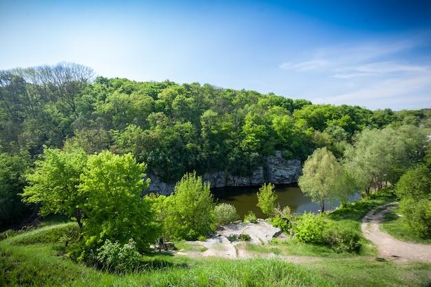 Bellissimo paesaggio di foresta, fiume e cielo blu profondo