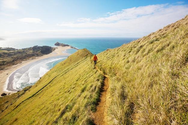 Bellissimo paesaggio di ocean beach, nuova zelanda.