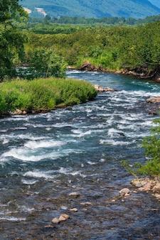Bellissimo paesaggio - vista dell'acqua limpida del ruscello del fiume di montagna e della foresta verde sulla riva del fiume. natura selvaggia di estate di paesaggio su tempo soleggiato.
