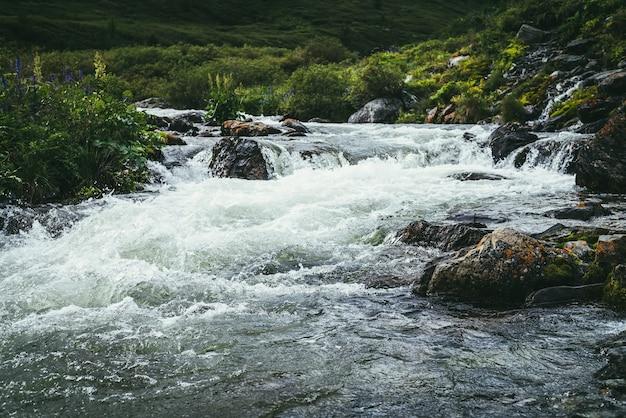 Bellissimo paesaggio con grandi massi coperti di muschio nell'acqua limpida del potente fiume di montagna vicino a boschetti selvaggi. scenario colorato di rapide sull'acqua trasparente del torrente di montagna e flora selvaggia delle montagne.