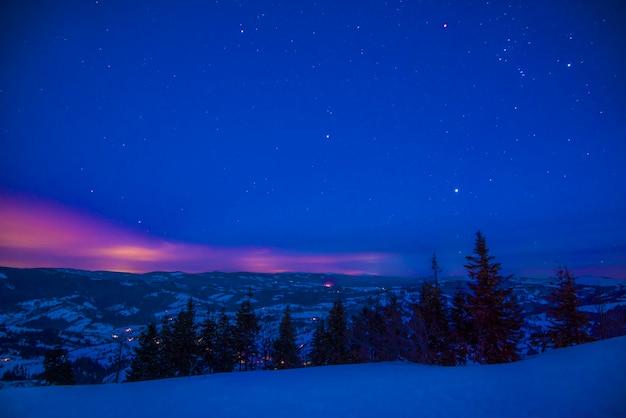 Bellissimo paesaggio con maestosi abeti alti che crescono tra cumuli di neve bianchi contro il cielo blu in una soleggiata giornata invernale gelida