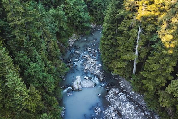 Bellissimo paesaggio con fiume di montagna nella foresta verde
