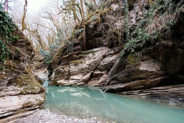 Bellissimo paesaggio con fiume