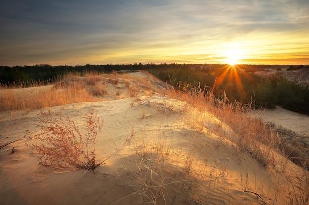 Bellissimo paesaggio con cielo al tramonto. composizione della natura