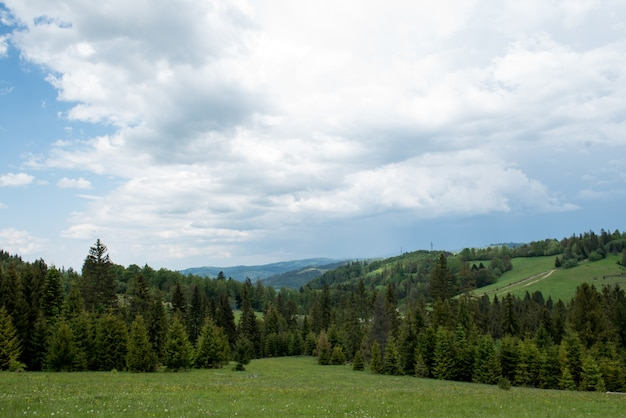 Bei paesaggi delle montagne dei carpazi ucraini