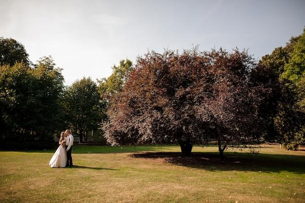 Bella coppia sposata in piedi su un campo di erba verde con un grande e bellissimo albero