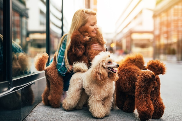 Bella mezza età bionda dog walker, gode di camminare con adorabili barboncini in miniatura in strada della città.