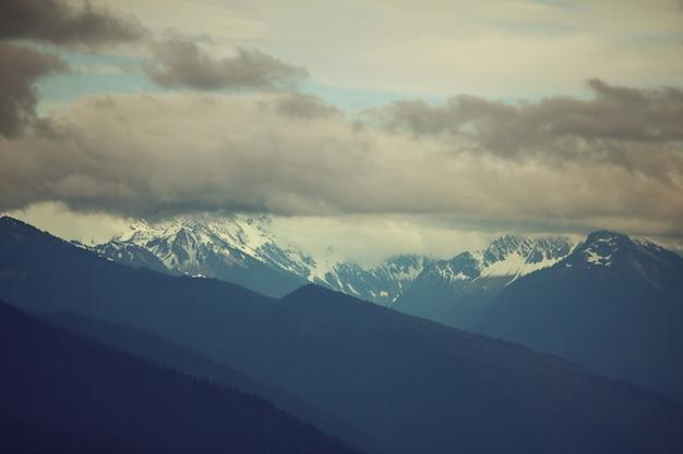 Bella scena mattutina in montagna. nebbia all'alba.