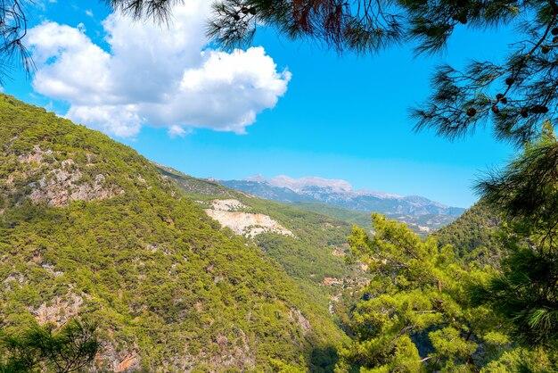 Bellissimo paesaggio di montagna della valle dimchay incorniciato da rami di pino, vicino ad alanya, turchia.