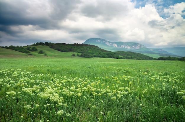 Bellissimo paesaggio di montagna con cielo nuvoloso. campo in crimea.