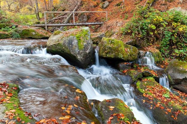 Bella cascata di montagna con alberi, rocce e pietre nella foresta autunnale