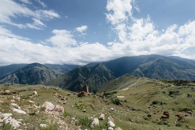 Belle montagne e fauna selvatica intorno a loro in una giornata di sole