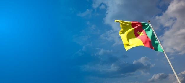 Bella bandiera nazionale dello stato del camerun con uno spazio vuoto.