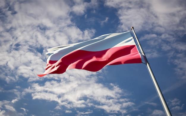 Bella bandiera nazionale dello stato della polonia che fluttua sul cielo blu