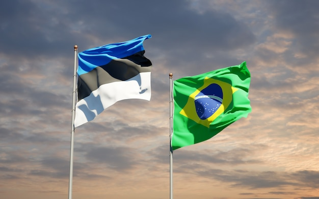 Belle bandiere dello stato nazionale del brasile e dell'estonia insieme sul cielo blu