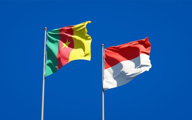Belle bandiere nazionali di stato dell'indonesia e del camerun insieme sul cielo blu