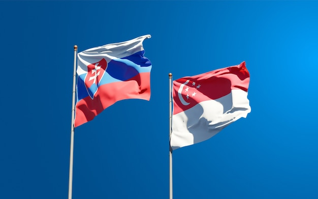 Belle bandiere di stato nazionali della slovacchia e singapore insieme
