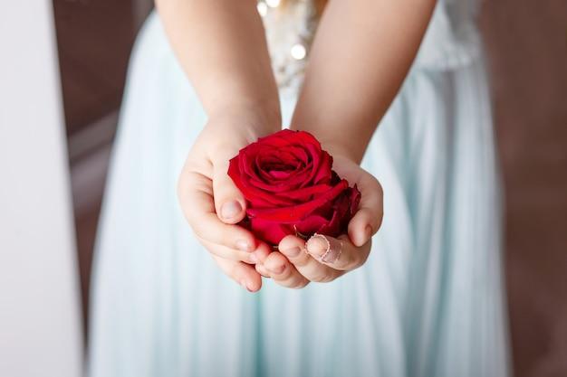 Bello e naturale. primo piano di belle mani femminili che tengono fiore. un bambino con un dito ferito tiene fiori tra le mani.