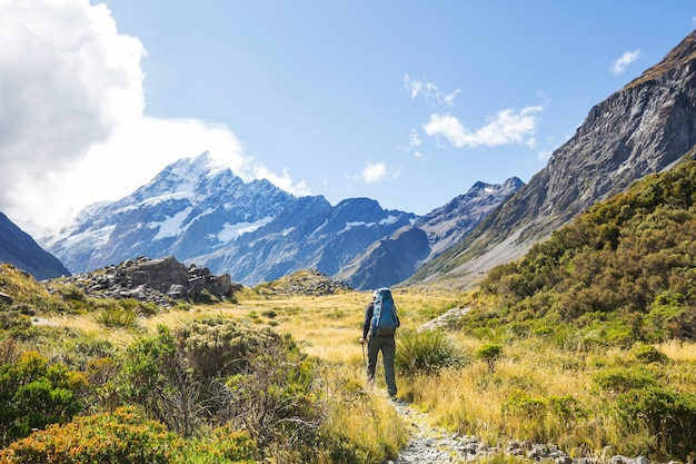 Bellissimi paesaggi naturali nel parco nazionale di mount cook, south island, in nuova zelanda
