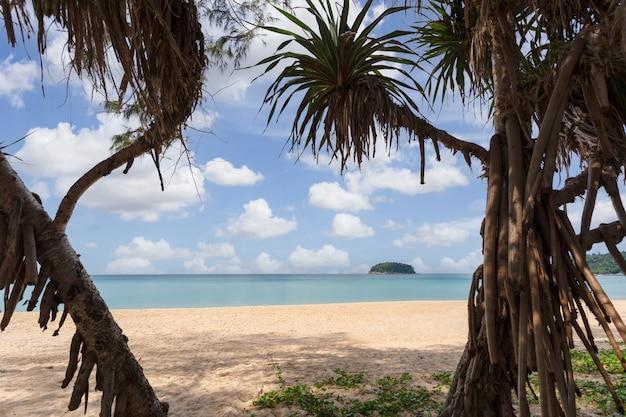 Bellissima natura del mare delle andamane e spiaggia di sabbia bianca al mattino a patong beach, isola di phuket, tailandia. natura e concetto di viaggio