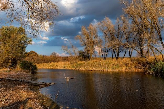 Bellissima natura e paesaggio autunnale con alberi gialli sulla riva del fiume don