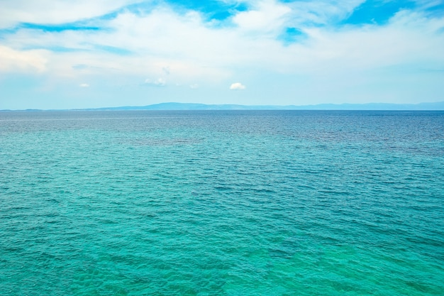 Bellissima natura in riva al mare sulla natura sullo sfondo del parco Foto Premium