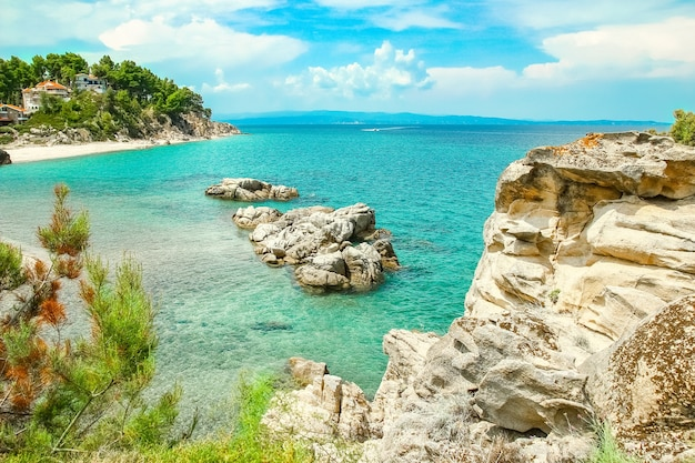 Bellissima natura in riva al mare sulla natura sullo sfondo del parco