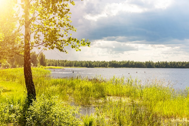 Bellissimo paesaggio naturale con luce del sole e nuvole piovose paesaggi con erba verde di alberi di lago e sk...